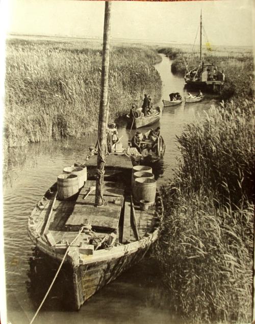 Schiffahrt auf Kanälen, überall das wichtige Schilf