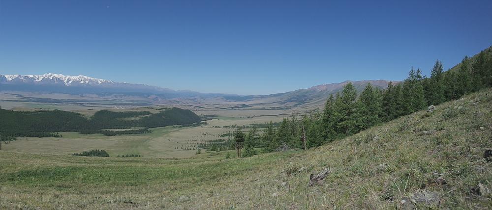 Das Kuraj Tal. Blick von Osten