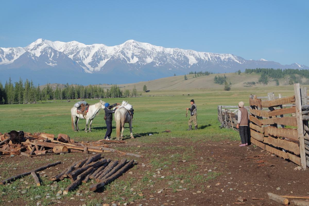 Viehzüchter im Aufbruch